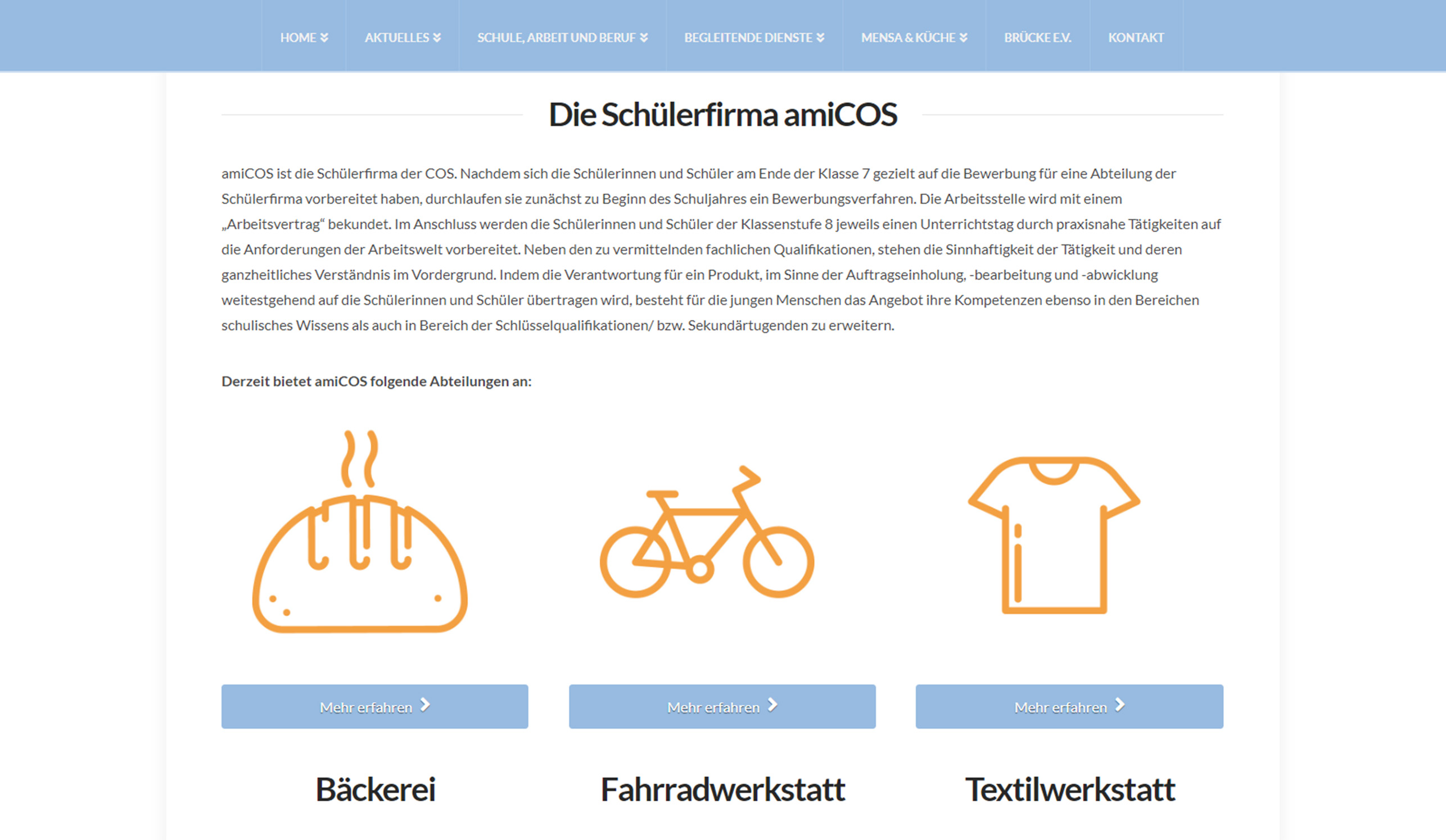 cos_webseite_preview_screen_amicos